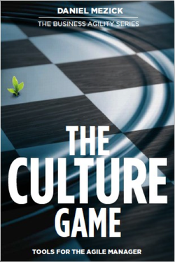 The Culture Game cover  preview